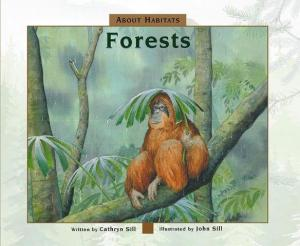 about forests