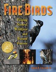 fire-birds