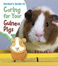 caring for your guinea pigs