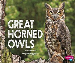 great-horned-owls