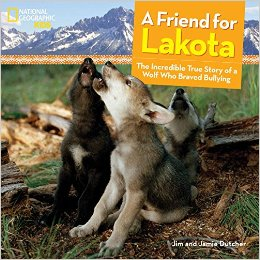 Friend for Lakota