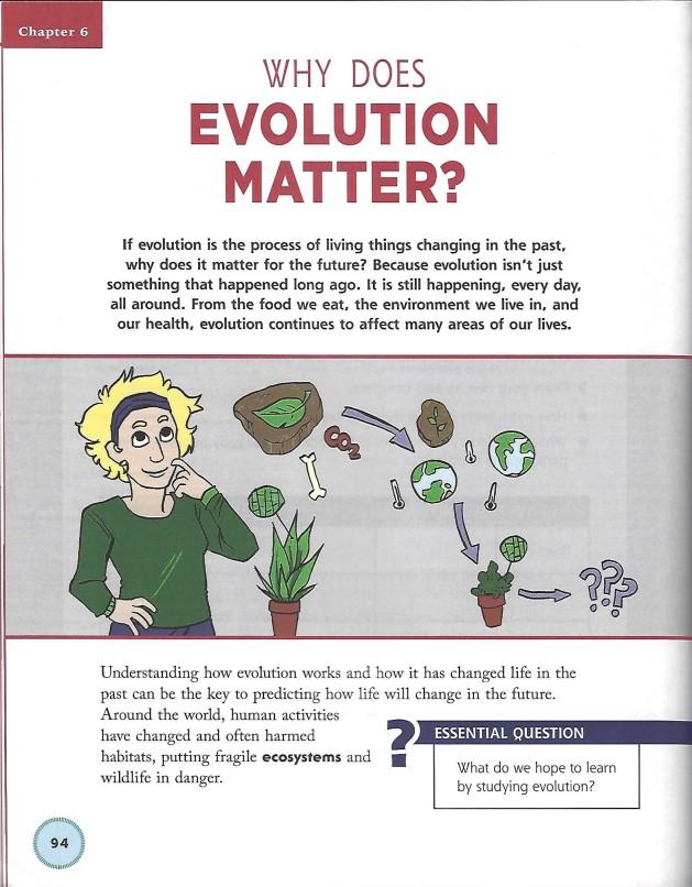 Evolution - interior pic